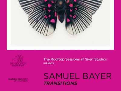 sambayertransitions