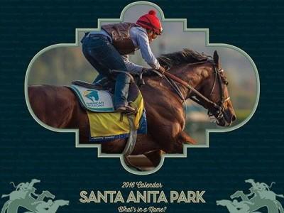 SantaAnitaPark