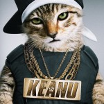WE IN THE MARKET RIGHT NOW FOR A GANGSTA PET: WARNER BROS. 'KEANU'