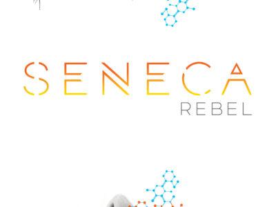 SENECA_REBEL_YABookSeries